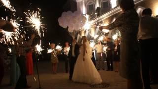 Ведущий во Владимире Катерина Федотова - Свадьба Марины и Сергея 12.09.2014