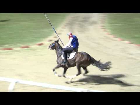 La Quintana, Di  Ascoli Piceno Luglio 2016, Parte   5