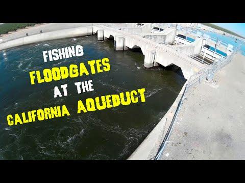 Fishing FloodGates At The California Aqueduct