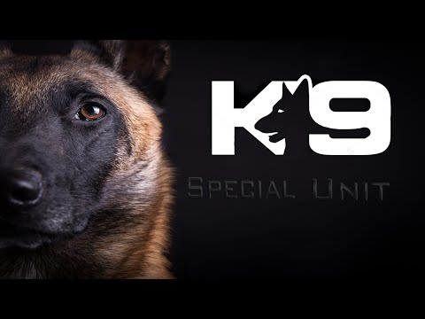 Military&Police Dogs │ Tribute