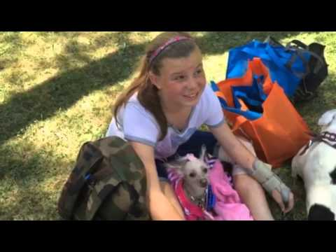 Dogs Turn Out For Big Doggy Dash
