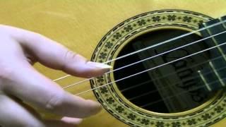 世界が終るまでは...(WANDS)  ソロギターver.