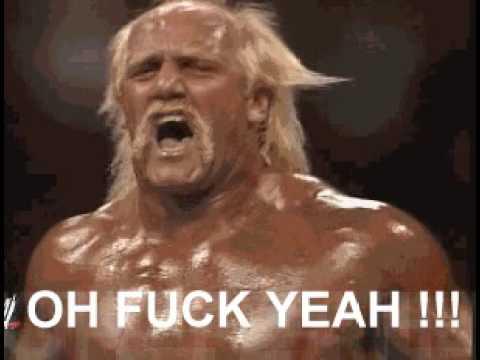 Hulk Hogan Vs Ultimate Warrior Gif