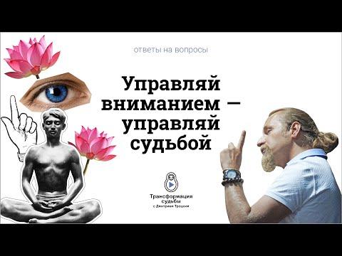 1199. Управляй вниманием — управляй судьбой. Дмитрий Троцкий