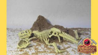 Excavation Station T.rex Dig Site Toy