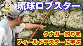 vol.227 タナガー釣りを学ぼう!【あまくま】 thumbnail