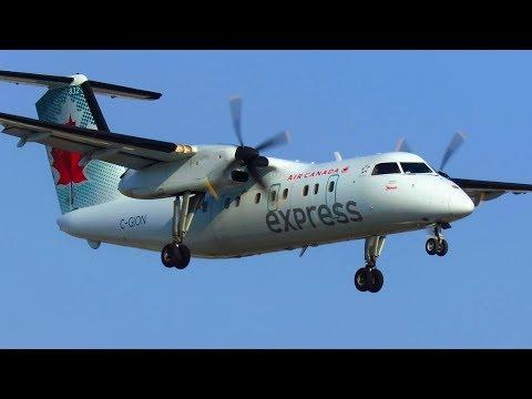 SHORT LANDING! Air Canada Express Dash 8 Q100 [C-GION] Landing at Toronto YYZ!