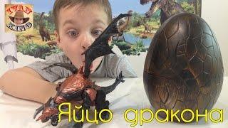 Огромнейшее яйцо дракона DRAGON EGG