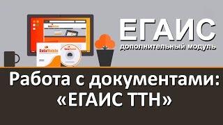Модуль DataMobile ЕГАИС. Работа с документами: