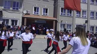 SÜPER ERİK DALI GÖSTERİSİ Video