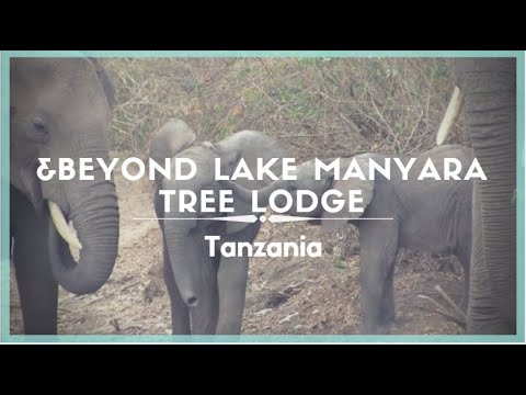 Celestielle #207 &Beyond Lake Manyara Tree Lodge, Lake Manyara National Park, Tanzania
