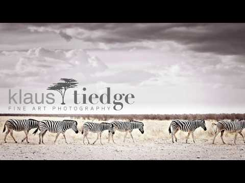 Limited edition prints - quality & originality | Klaus Tiedge - wildlife fine art photographer