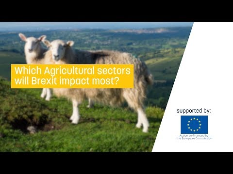 Which Agricultural sectors will Brexit impact most?