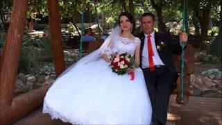 свадьба каменск-шахтинский, парк лога