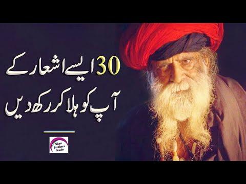 4 Line Poetry | Urdu Sad Poetry | Rj Shan Ali | Sad Hindi Poetry | Urdu Shayari | Four Line Poetry