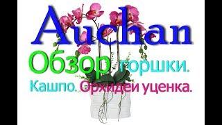 АШАН. Леруа Мерлен.Обзор орхидей,горшки,кашпо,грунт.Цветы.