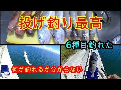 天草太刀魚&投げ釣り