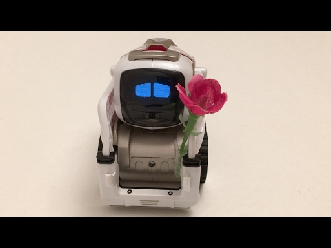 From Cozmo to Vector: How Anki Designs Robots With Emotional