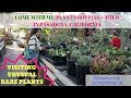 Come With Me Plant Shopping Tour Pasadena CA Dec 2018 ILOVEJEWELYN mp3