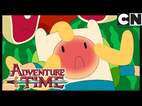 walnuts-&-rain-|-adventure-time-|-cartoon-network