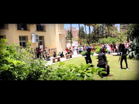Flash Mob Palestine 2013 - Alexandria University
