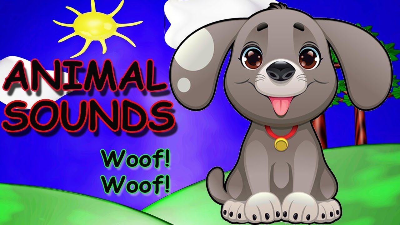 Animal Names Song with Matt Wild Animals For Children ...