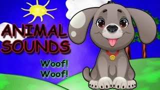 The Animal Sounds Song - Animal Songs for Children - Kids Songs by The Learning Station