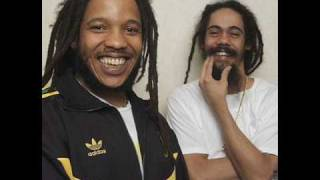 Stephen & Damian Marley - The Mission (Dubstep Remix)