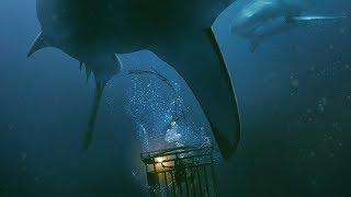 "26-й кадр: Рецензия на фильм ""Синяя бездна"""