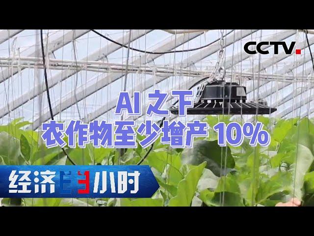开源自有黄金屋!种地用上AI算法至少增产10% 「经济半小时」20210715 | CCTV财经