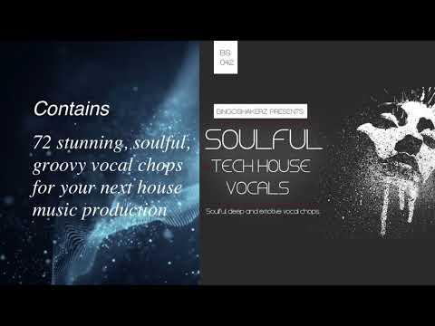 Bingoshakerz - Variavision Soulful Tech House Vocals