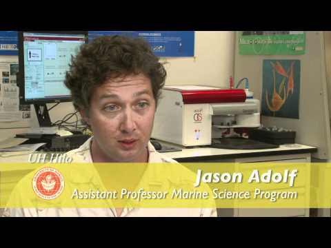 Discover the University of Hawaii at Hilo Marine Science