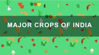 Major Crops of India - Rabi, Kharif, Zaid crops | Indian Agriculture, Geography