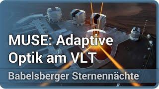 MUSE • adaptive Optik am VLT | Tanya Urrutia