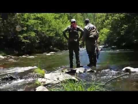 HeySmokies Fly Fishing 101 With Smoky Mountain Angler