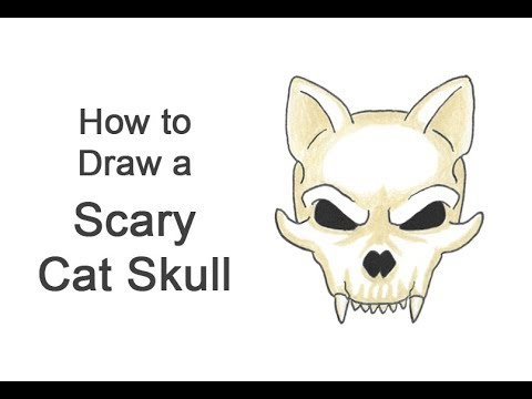 How To Draw A Cat Skull Halloween Video Step By Step Pictures