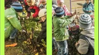 """ДНЗ №599 Інтегроване заняття для дітей старшого віку """"З ГОРОДУ - ДО СТОЛУ"""""""