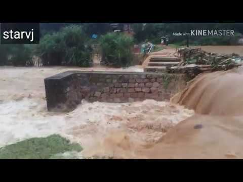 Heavy rain in kerala | പെരും മഴ | malayalam  breaking news