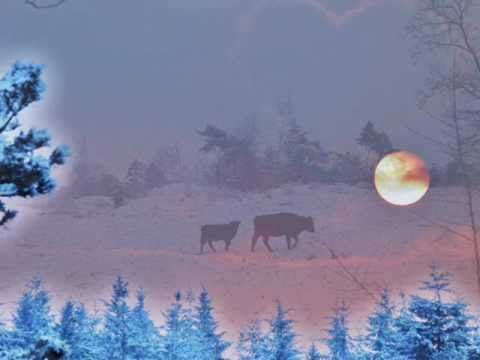 Song for a winter's night ~ Gordon Lightfoot ~ with lyrics