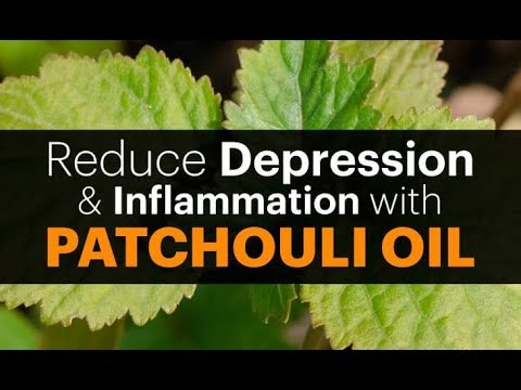 wow-wow-wow-surprising-health-benefits-of-patchouli-essential-oil