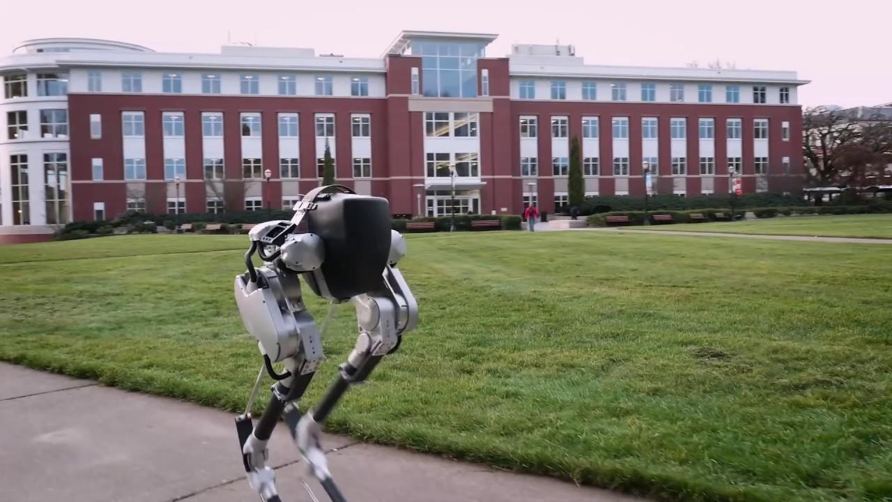 Cassie es un robot bípedo que no tiene obstáculos