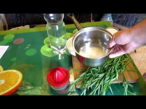 Тархун (трава) – рецепт приготовления напитка в домашних