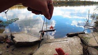 Рыбалка на РЕКЕ с НОЧЁВКОЙ ! Ох уж эта РЫБАЛКА) Рыба сказала НЕТ!!!