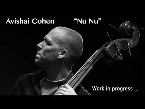 Cover n°1 : Avishai Cohen - Continuo - Nu Nu (Intro)