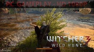 The Witcher 3: Wild Hunt | PC Gameplay | HD 1080P | 60FPS