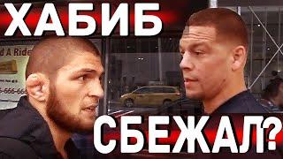 Нурмагомедов дал интервью о следующем бое/Неит Диаз о стычки с  Хабибом