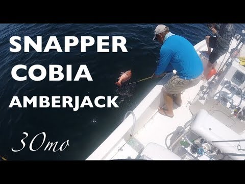 10milesOut - BIG RED SNAPPER - Cobia ,Amber Jack , Mangrove Etc, Reef Fishing Pensacola Florida