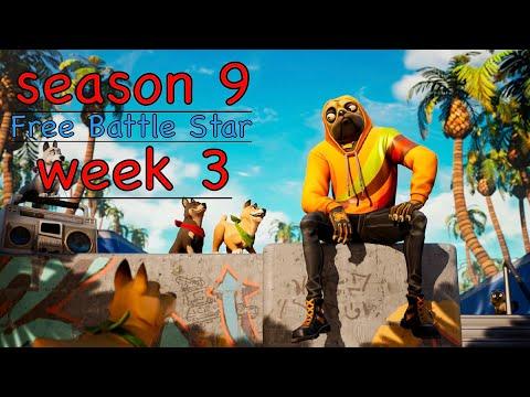 Fortnite Season 9 Week 3 - Free Battle Star Location!