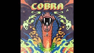 """Dutty Deedz & Su Real - """"COBRA"""" ft. General Zooz, Shah Rule & Kavin (DJ Skip Remix)"""