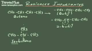 Radicales alcanos, alquenos, alquinos y cíclicos